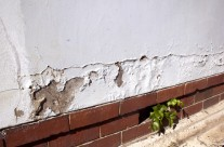 Problems with damp